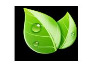 eco_conduite